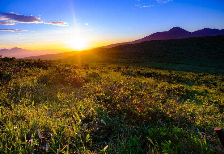 草原と朝焼け