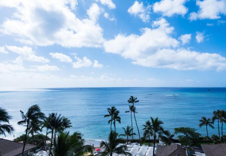 菅野一勢とハワイの景色